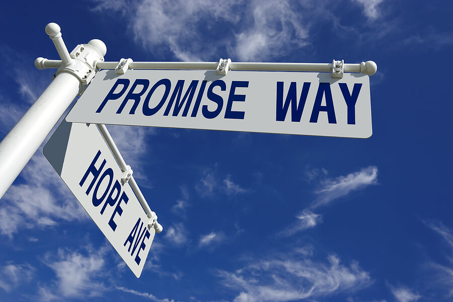 Promise Way Pol